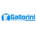 logo_gallorini